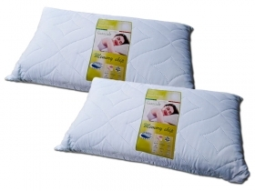 PAIR OF PILLOWS MADE OF MEMORY ANTI-DUST MITE BREATHABLE